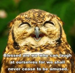 Owl say!